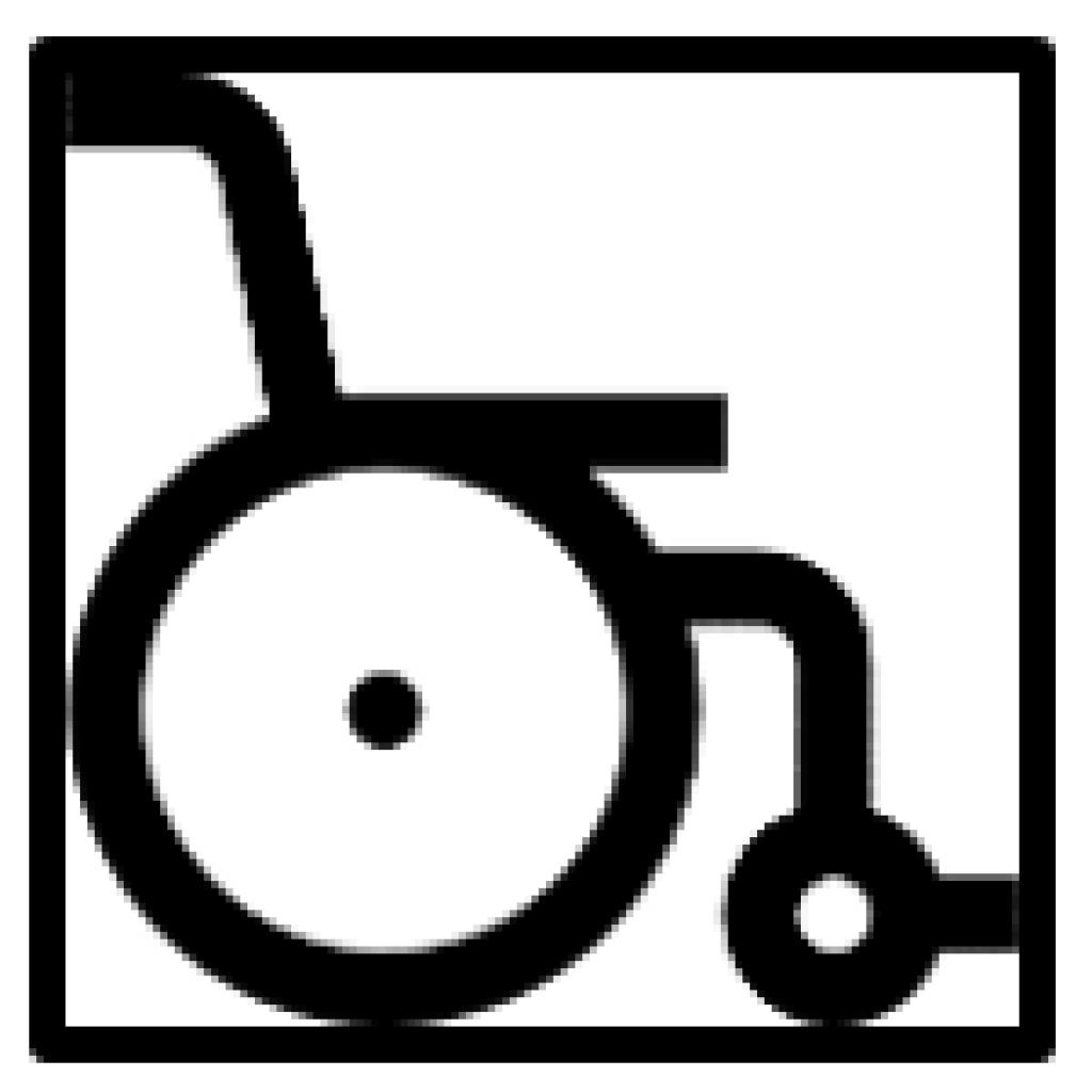 Logo cadira de rodes