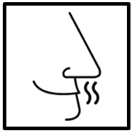 Logo olors